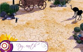Sims 3 — Dry earth terrain paint by Janthie78 — Some dry earth terrain paint for decorating your plot of land.
