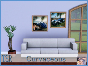 Sims 3 — Curvaceous by ziggy28 — Two retro styled paintings by the artist Gary Whinn. One file two paintings less