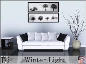 Sims 3 — Winter Light by ziggy28 — Two wonderful pictures by Ilona Wellmann. Recolourable frame. One file two pictures