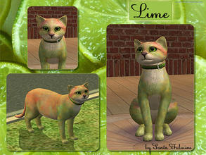 Sims 2 — Lime by Santa_Fulmine — Lime is unusual cat. He has such color because of a genetic experiments. :)