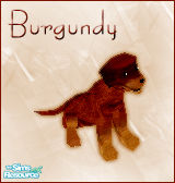 Sims 1 — Burgundy Dog by BloodMaple —
