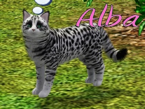 Sims 3 — Alba Cat by MissMoonshadow — Meet Alba, a beautiful female white and black cat. She is one of the sweetest,