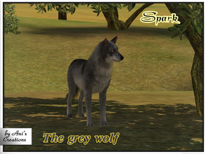 Sims 3 — Spark - the grey wolf by Ani's Creations by AniFlowersCreations — This wolf is truly domesticated. He is very