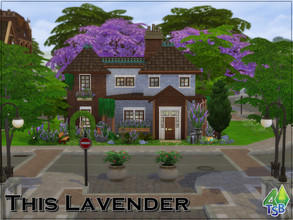 Sims 4 — This Lavender by Bozena — The house is located in the Gibbs Hill district. BriteChester. -kitchen -livingroom